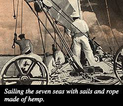billion sailor Popular Mechanics Article A New Billion Dollar Crop