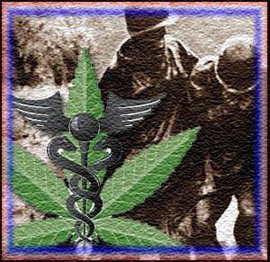 medical marijuana copy But is it NORML?