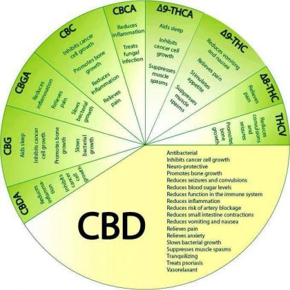 graph of medical properties of marijuana cbd thc 420x420 Three Conditions That Will Never be the Same Because Of Weed