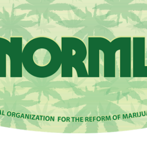 norml curved rolling papers