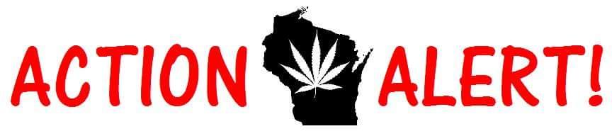 Medical Marijuana Senate and Assembly Committee Information