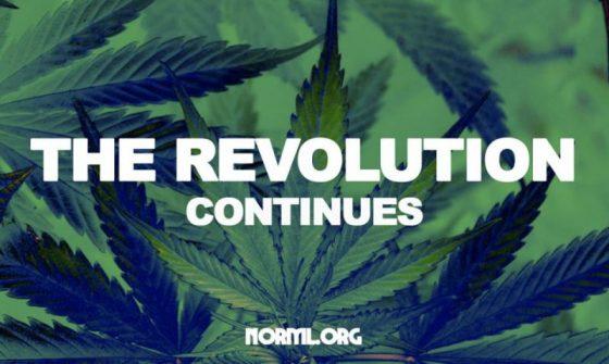 Cannabis Reform Lobby Day is Feb. 21, 2019