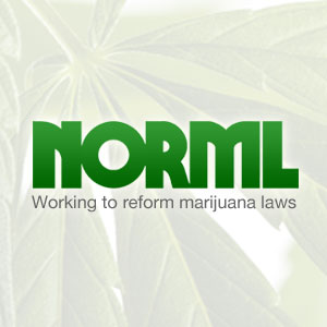 House Committee on Small Business Holds Hearing On Cannabis