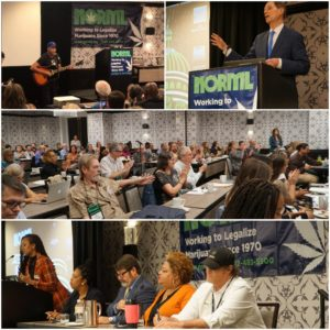 NORML Members Take DC by Storm